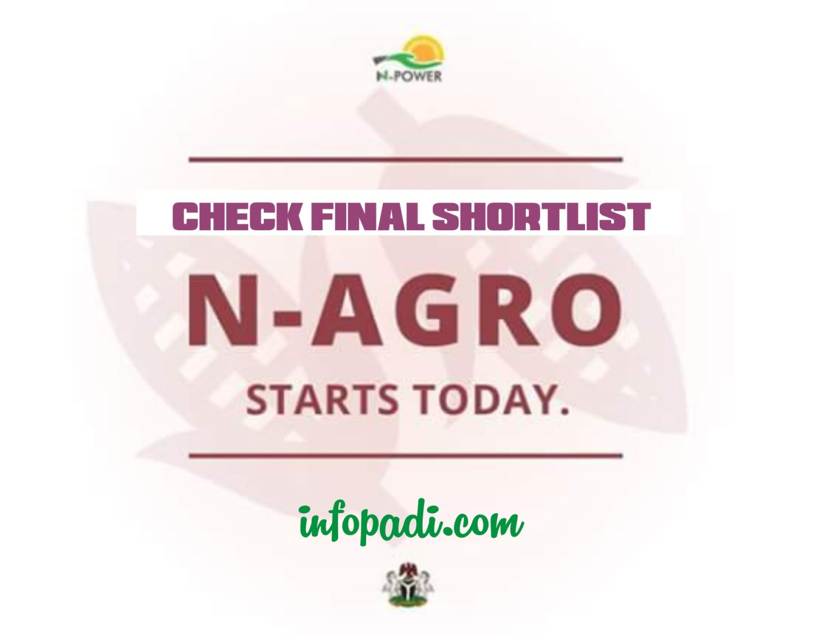 Npower Agro (N-Agro) Final Shortlist 2017/2018- Check for your name here