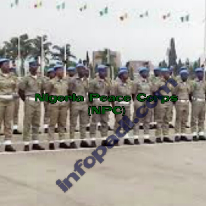 Nigeria Peace Corps 2018 Latest Update- It will create millions of jobs for youths- All you need to know about the Peace Corps in Nigeria