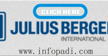 Julius Berger Internship