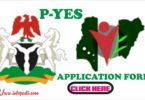 P-YES 2019 Form