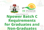 Npower requirements